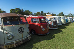 VW vans at show stock photo