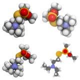 VX molecule (zenuwagent) Royalty-vrije Stock Afbeeldingen