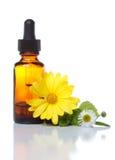 växt- medicin för aromatherapy flaskdroppglass Arkivbilder