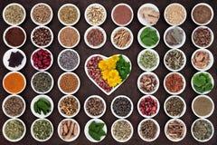 Växt- medicin för kvinnor Arkivfoto