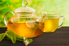 Växt- medicin, te med Plantagolanceolata Arkivbild
