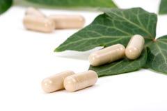 växt- supplements Royaltyfri Foto