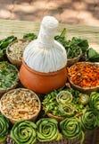 växt- thai för compress Arkivbild