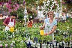 växthusarbetare Arkivfoto