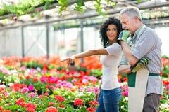 Växthusarbetare som talar till en kund Royaltyfri Bild