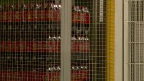 Vyatka kvass konwejeru przygotowanie dla pakować i transport skończony - produkty zdjęcie wideo