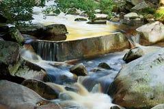 Vydra flod Royaltyfria Foton