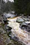 Vydra stream, Šumava, Czech Republic. Stock Photos