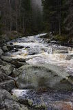 Vydra stream, Šumava, Czech Republic. Stock Photography