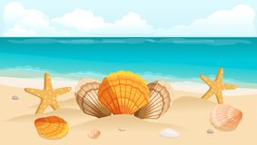 Vykort för vektorillustrationlopp, broschyr, stranden, havet, sammansättningen av skal Fotografering för Bildbyråer
