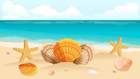 Vykort för vektorillustrationlopp, broschyr, stranden, havet, sammansättningen av skal Royaltyfria Bilder