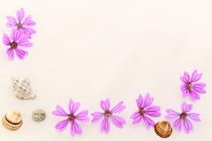 Vykort med det tomma stället för inskrift från spridda rosa färger sm Fotografering för Bildbyråer