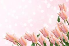 Vykort med eleganta blommor Royaltyfri Fotografi