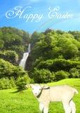 Vykort med en solig vattennedgång på en ljus sommardag med ett sött lamm och en härlig collage för blå himmel med lycklig easter  stock illustrationer