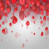 Vykort med fallande röda kronblad royaltyfri illustrationer