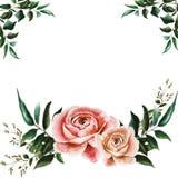 Vykort med rosor royaltyfri illustrationer