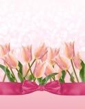 Vykort med tulpan för nya blommor Arkivbild