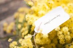 8 vykort- och mimosablommor för mars Arkivbilder