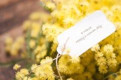 8 vykort- och mimosablommor för mars Royaltyfria Foton