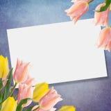 Vykortet med tulpan för nya blommor och tömmer stället för din te Royaltyfri Bild