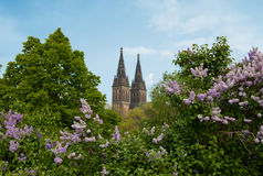 Vysehrad - Peter and Paul Cathedral in Prague Royalty Free Stock Photos