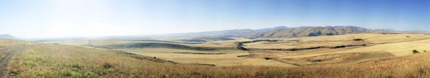 Vysogorny fields of wheat Royalty Free Stock Photos