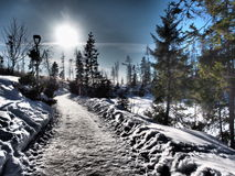 Vysoke Tatry冬天2015年斯洛伐克 库存图片