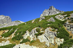 Vysoke Tatry - High Tatras Royalty Free Stock Photography