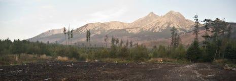 Vysoke Tatry panorama Arkivbilder
