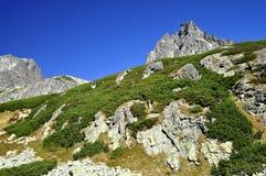 Vysoke Tatry - Tatras elevado Fotografia de Stock Royalty Free