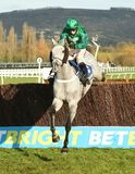 Horse Racing. Vyta du roc 1st looses a shoe seen here jumping the last at cheltenham races Stock Images