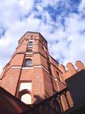 Vytautas教会2 库存图片