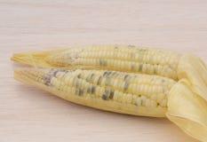 Wächserner Mais, wächserner Mais auf hölzernem Hintergrund Lizenzfreies Stockbild