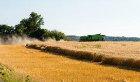 Während der Ernte mäht der Mähdrescher den reifen Weizen auf dem Gebiet stockbild