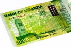 Währungsbanknote von Afrika Lizenzfreies Stockfoto