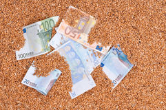 Währungsgetreide Stockbilder