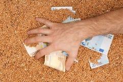 Währungsgetreide Stockbild