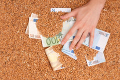 Währungsgetreide stockfotografie