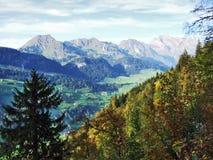 Wälder im Thur River Valley oder im Thurtal-Tal stockfotos