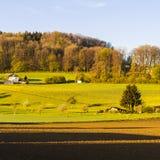 Wälder und gepflogene Felder in der Schweiz Stockfoto