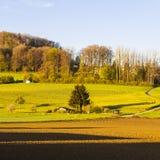 Wälder und gepflogene Felder in der Schweiz Stockfotos