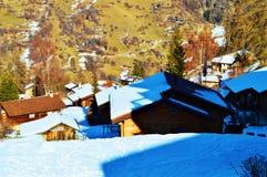 Wälder und Häuser in den Schweizer Alpen lizenzfreie stockfotografie