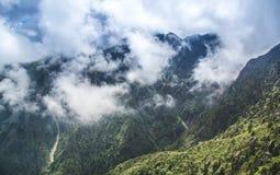 Wälder und Nebel Lizenzfreie Stockfotos