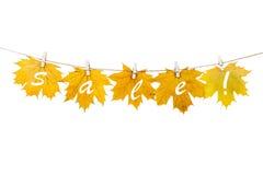 Wäscheklammern auf dem Seil, das Herbstlaub auf einem weißen backgro hält Lizenzfreies Stockfoto