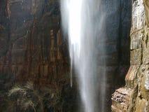 Wässern Sie das Fallen gegen die Sandsteinklippen von Zion National Park Stockbild