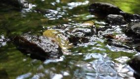 Wässern Sie das Fließen Lizenzfreie Stockbilder