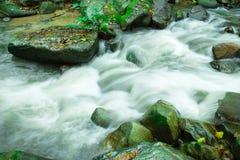 Wässern Sie das Fließen in den Wald an Dorf Bann Mae Mae Stockbild