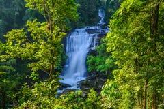 Wässern Sie den Fall, der im tiefen Regenwalddschungel gelegen ist Stockbilder