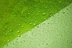 Wässern Sie den Rückgangshintergrund, umfasst mit Wasserrückgängen - Kondensation, Nahaufnahme. Stockfotos