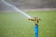Wasser-Springer Lizenzfreie Stockfotos